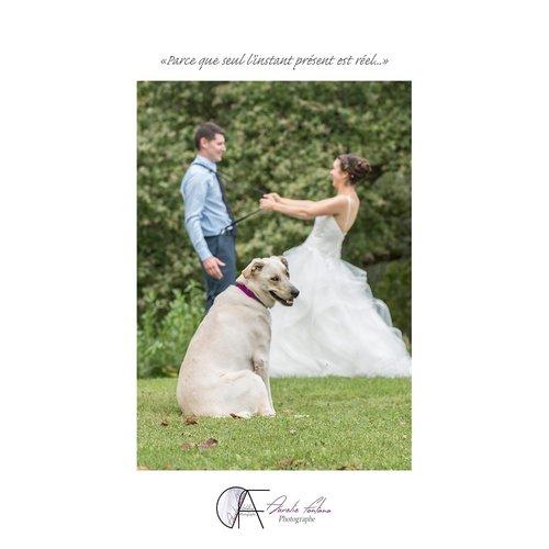 Photographe mariage - aurelie fontana - photo 68