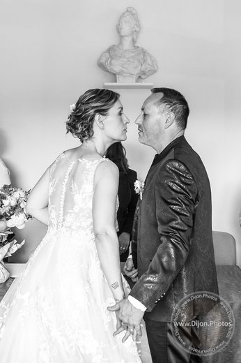 Photographe mariage - Nicolas de www.Dijon.Photos - photo 15