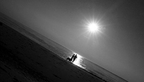 Photographe mariage - Tutos Vidéos - photo 3