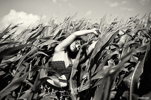 Photographe - stefan bodar photography - photo 21