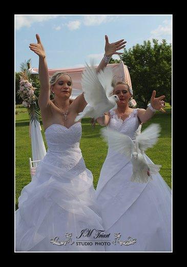 Photographe mariage - JM Triart Studio Photo - photo 37