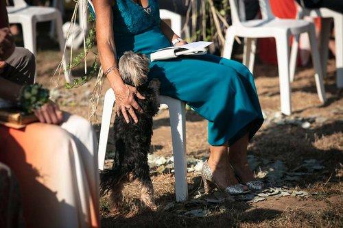 Photographe mariage - Loïc Nicoloso Photographe - photo 46
