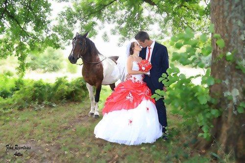 Photographe mariage - SARL STUDIO FEHA - photo 2