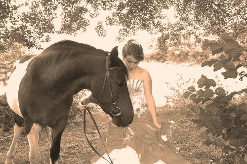 Photographe mariage - SARL STUDIO FEHA - photo 3
