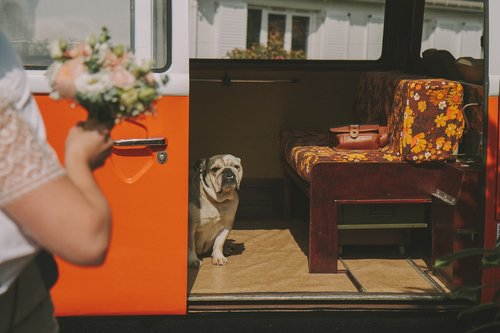 Photographe mariage - Vie Bontemps Photographe - photo 3