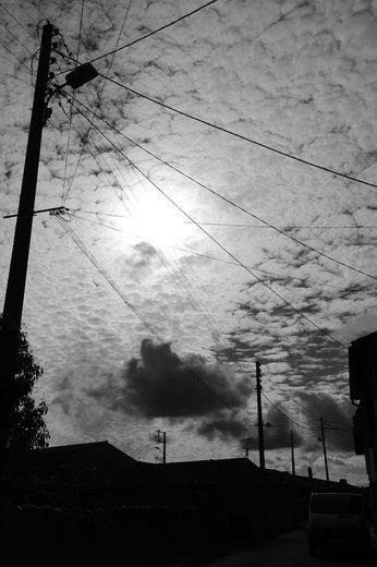 Photographe - CéKoo PHOTO - photo 6