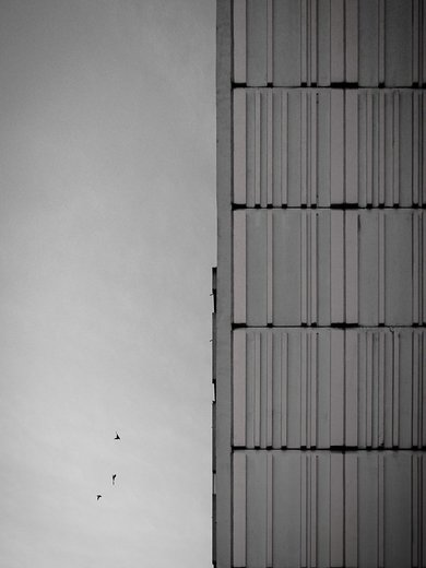 Photographe - Antonin Gateau - photo 45