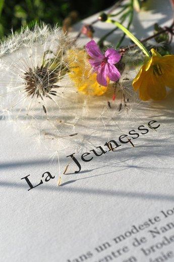 Photographe mariage - VisuElle photos - photo 26