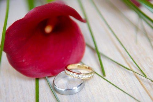 Photographe mariage - Sophie Huet Photographie  - photo 106