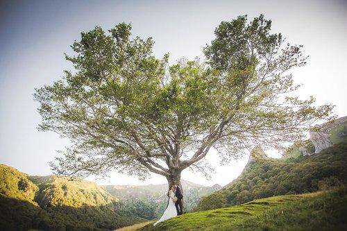 Photographe mariage - ALBA PHOTOGRAPHIE - photo 36